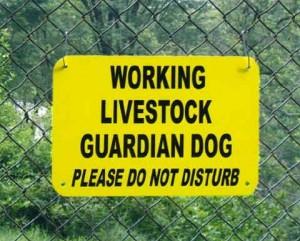 guardian dog sign
