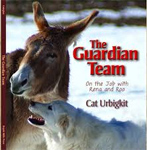 Guardian Team cover