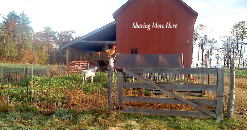 sharing barn