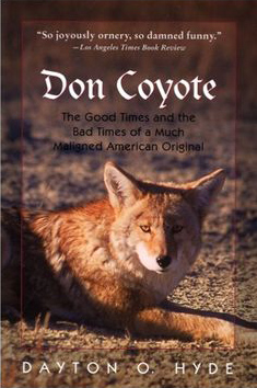 Don Coyote